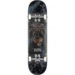 surf skate\natives.jpg